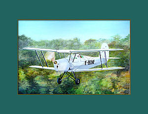 Stampe F-BDNF 2 OPT