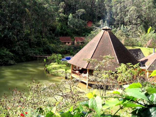 Andasibe , Vakona Forest Lodge
